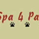 Voir le profil de Le Spa 4 Pattes - Saint-Léonard