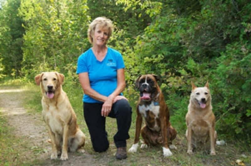 Dog Training School Vancouver