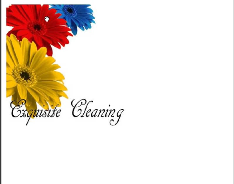 photo Exquisite Cleaning