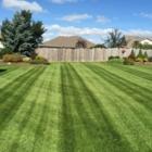 Dale's Lawn and Landscape - Landscape Contractors & Designers