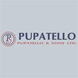 Voir le profil de Pupatello & Sons Ltd General Contractors - Amherstburg