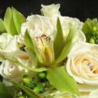 Voir le profil de Vine Floral - Fonthill