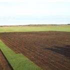 Gusta Sod Farms - Landscape Contractors & Designers
