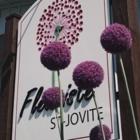 Fleuriste St-Jovite Enr - Florists & Flower Shops - 819-425-3366