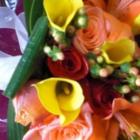 Petals Plus - Boutiques de cadeaux
