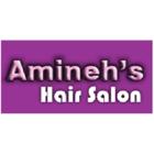 Amineh's Hair Care