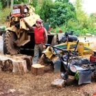 Beechwood Tree Service - Tree Service - 250-749-3449