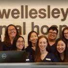 Wellesley Animal Hospital - Veterinarians - 416-966-1830
