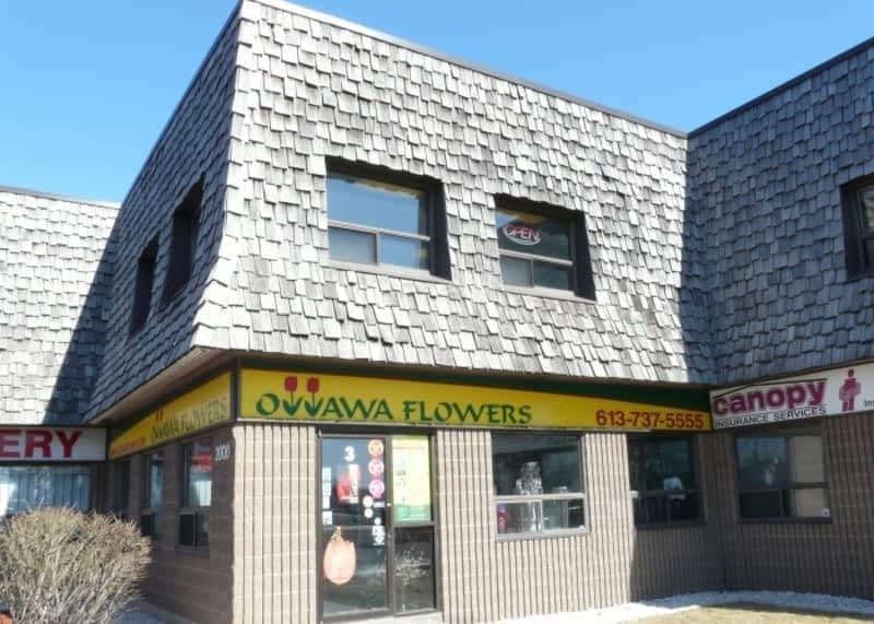 photo Ottawa Flowers