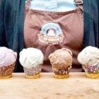 Rocky Point Ice Cream - Ice Cream & Frozen Dessert Stores - 604-492-3119