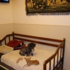 Happy Paws Pet Resorts - Kennels - 519-975-1234