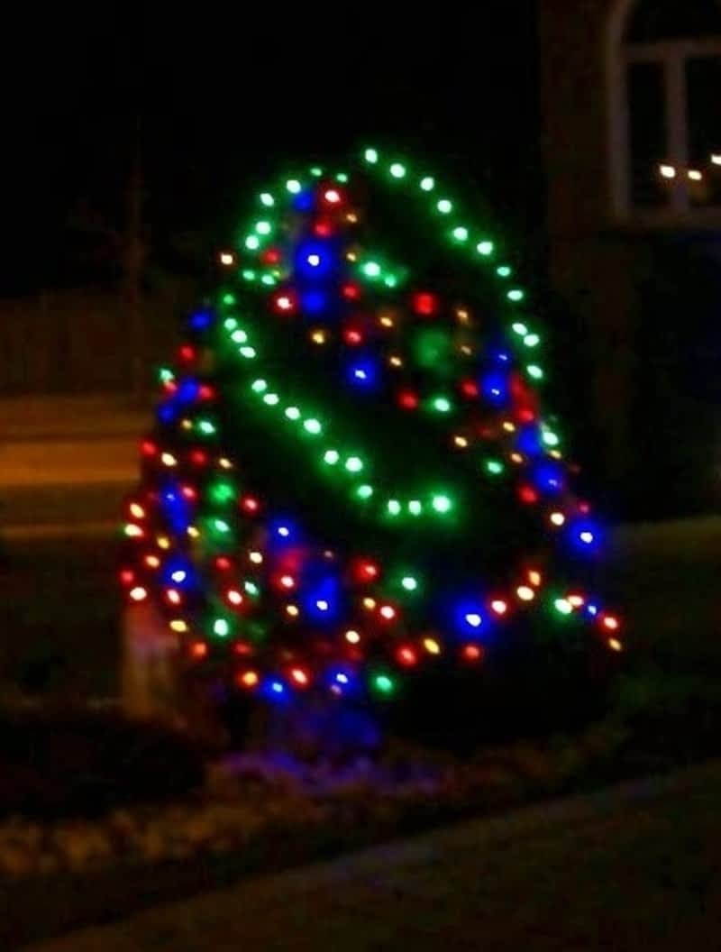 photo Ho Ho Holiday Lights