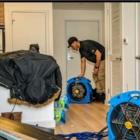 GTA Bed Bug Exterminators - Pest Control Services