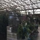Glen Echo Nurseries Inc - Nurseries & Tree Growers - 905-584-9973