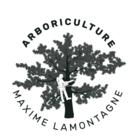 Arboriculture Maxime Lamontagne - Déneigement - 418-290-8250