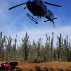 Forteck Enviro Inc - Conseillers en foresterie