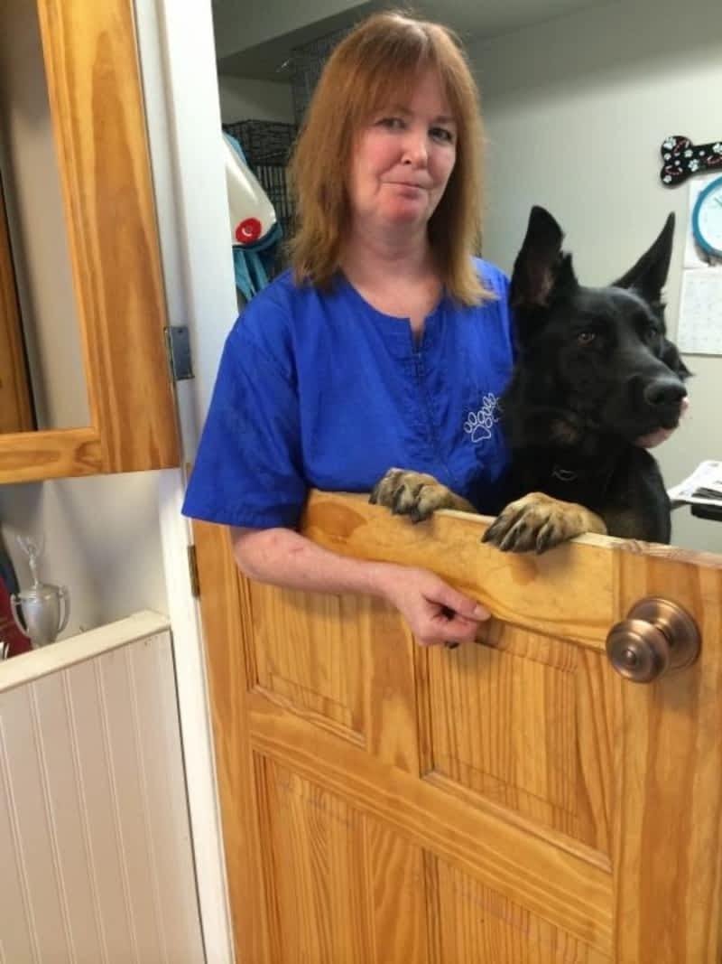 Dog Grooming Chilliwack Bc