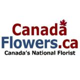 View Canada Flowers - Vancouver Florist's Vancouver profile