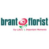 Voir le profil de Brant Florist - Mount Hope