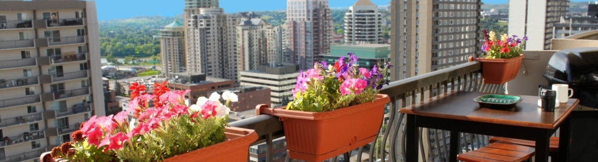 The view from above: Ottawa's top rooftop patios