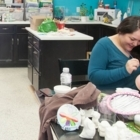 Create Shop Ltd The - Pottery Equipment & Supplies