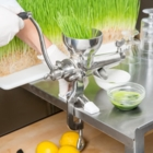 The Wheatgrass Store - Fruit & Vegetable Juices