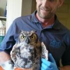 Wild Harmony Wildlife Removal - Pest Control Services - 519-682-9328