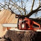 Les Services d'Arbres J.F.T.-Émondeur - Tree Service