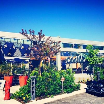Restaurant Cecile et Ramone - Pubs - 418-681-7625