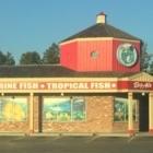 Big Al's Aquarium Supercentres - Magasins d'accessoires et de nourriture pour animaux - 905-428-9786
