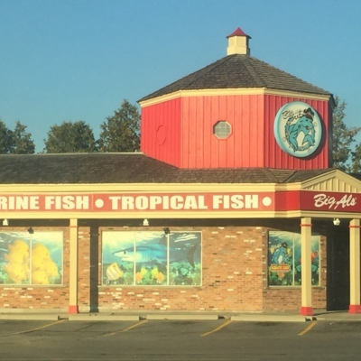 Big Al's Aquarium Supercentres - Pet Food & Supply Stores - 905-428-9786