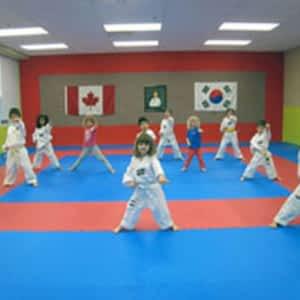 Master Ryu's Taekwondo - Opening Hours - 2195 Wyecroft Rd