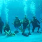 Barrie Scuba House Ltd. - Diving Lessons & Equipment