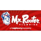 Mr Rooter Plumbing - Logo