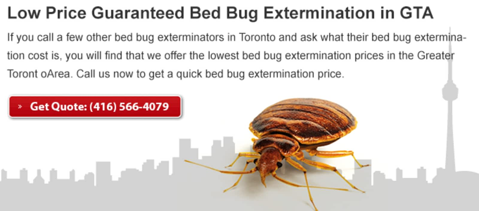 chemical control bugs pest heat bed exterminator baltimore bug