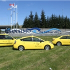Yellow Cab Of Nanaimo - Taxis - 250-751-1111