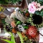 Gibsons Florist - Indoor Plant Stores