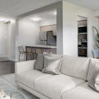York Mills and Leslie - Appartements - 647-475-6029