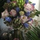 La Pépinière- fleuriste  Daigneault  - Pépinières et arboriculteurs - 450-649-0125