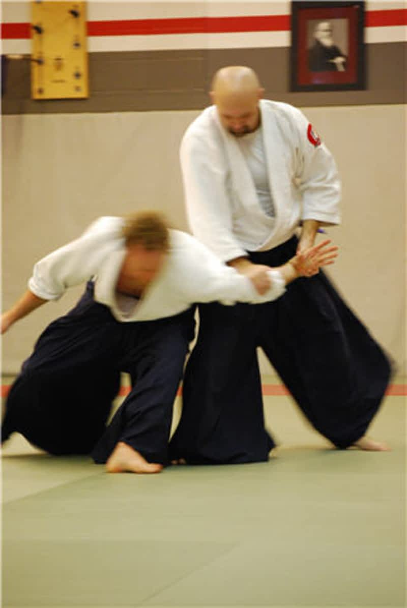 Abundant peace aikido tai chi school st albert ab for Abundant life beauty salon
