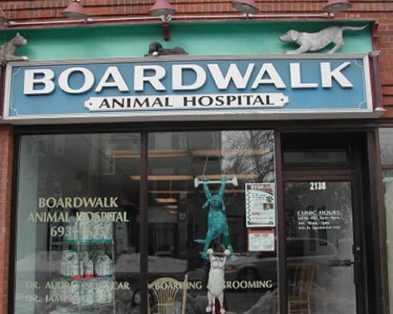 photo Boardwalk Animal Hospital - In The Beaches