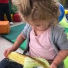 Promontory Hummingbird Child Care Centre