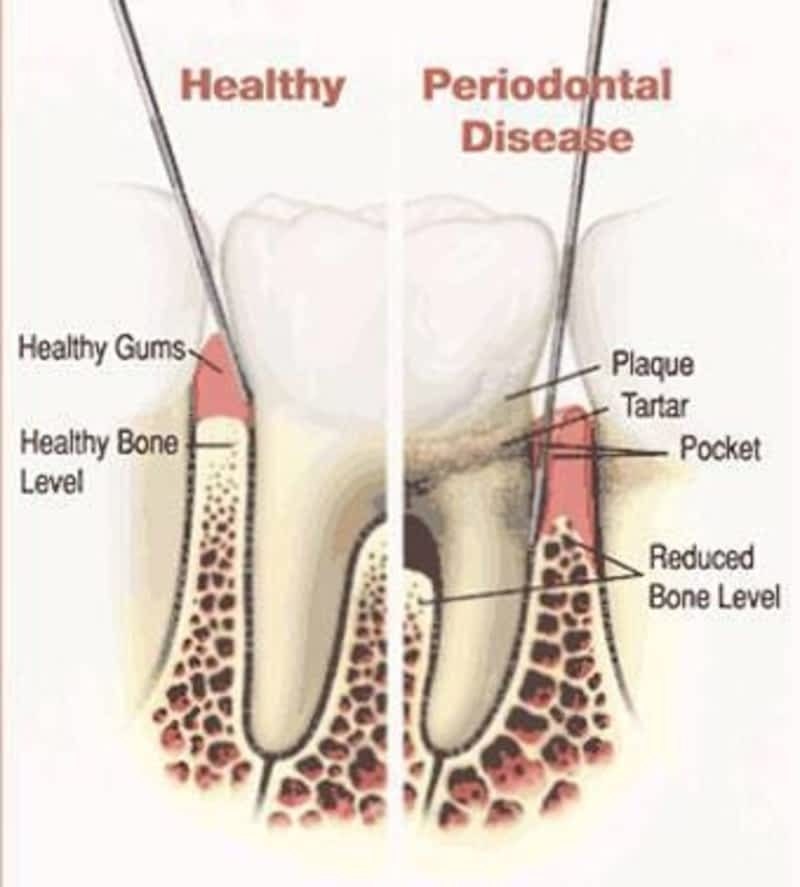 photo Sierra Springs Dental Airdrie