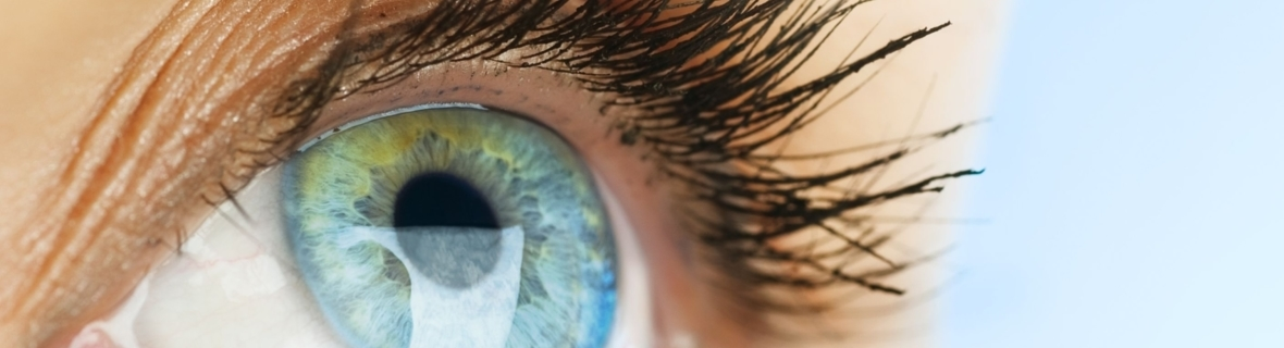 Where To Get Eye Catching Eyelash Extensions In Calgary Yp Smart Lists
