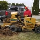 Stumped Tree Service - Landscape Contractors & Designers