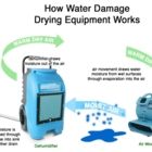 5 Star Cleaning - Water Damage Restoration - 416-315-7562