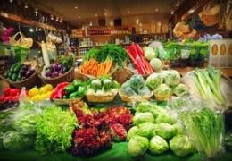 Health food stores in Edmonton