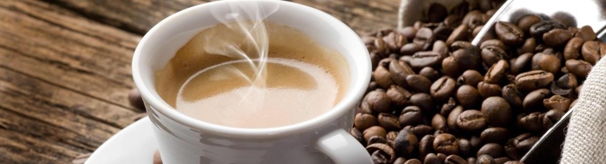 Toronto indie coffee roasters for caffeine lovers