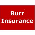 Burr Insurance Brokers Limited - Assurance - 613-966-3471