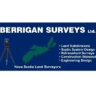 Berrigan Surveys - General Contractors